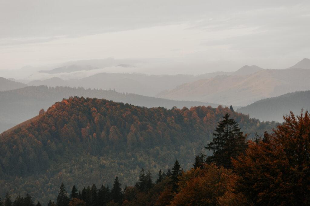 Cioban Cătălin - fotografie din Plutonița (Frasin), Suceava